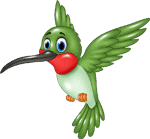hummingbird cartoon